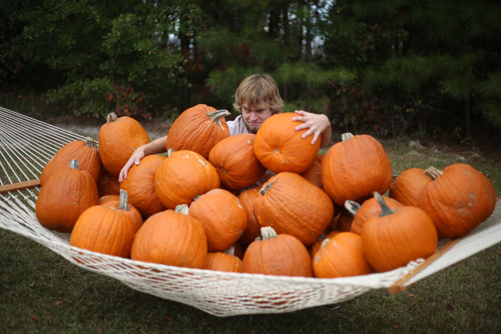 How Many Pumpkins can Fit in a Hammock?